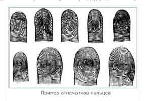Пример отпечатков пальцев