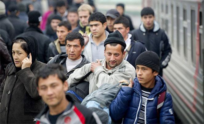 Беженцы: их права и жизнь в Германии