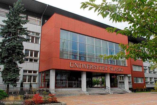 Силезский университет