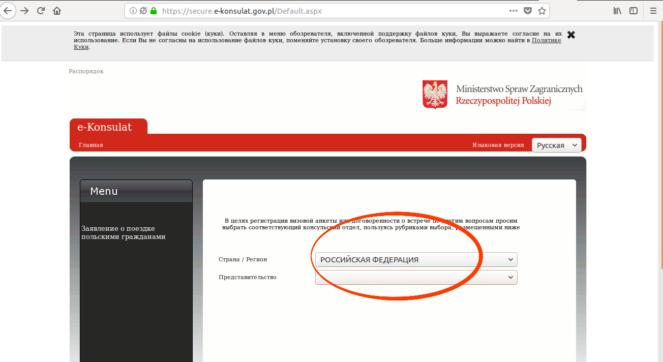 Выбор бланка на рабочую визу в Польшу