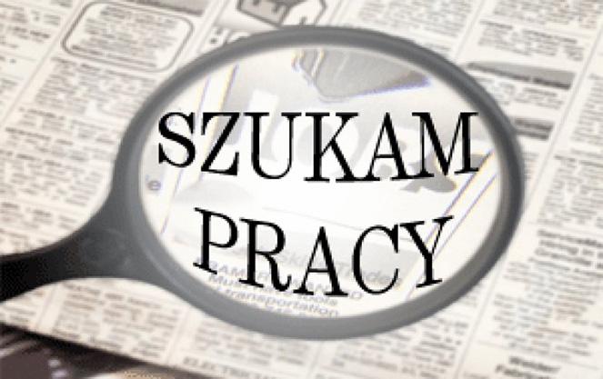Поиск польских вакансий