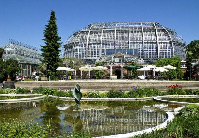 История ботанического сада