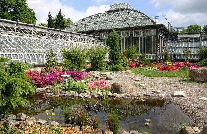 Интересное в Берлине: сад