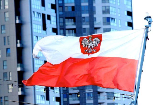 Зачем нужен номер Regon и как его получить в Польше в  2019  году