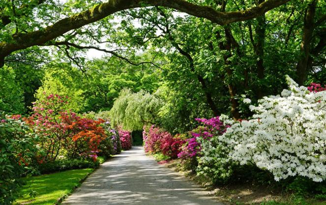 Северная часть английского сада