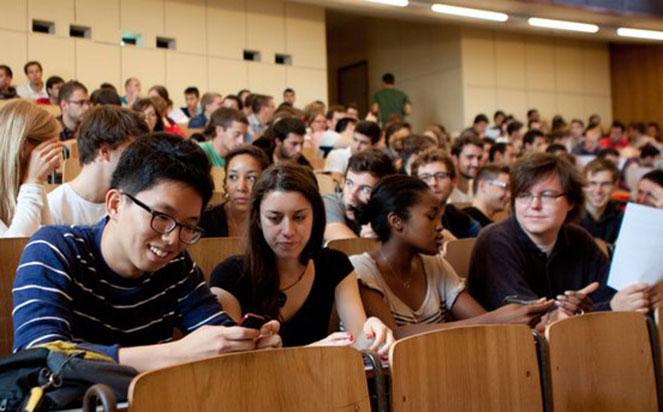 Особенности системы высшего образования