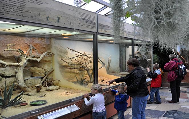 Семейный отдых в зоопарке