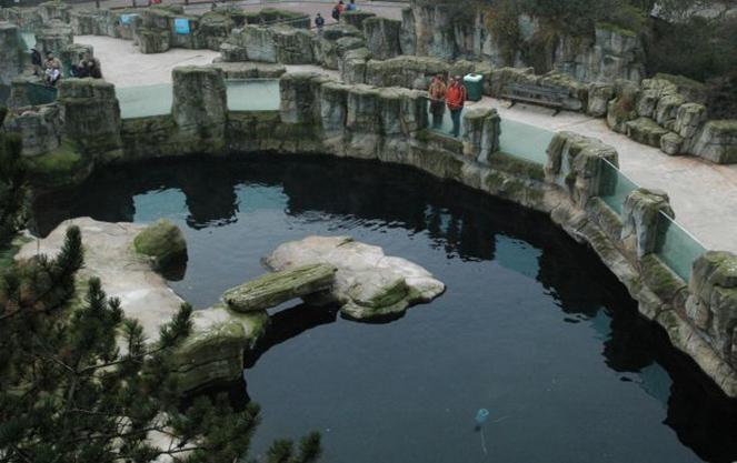 Сведения о франкфуртском зоопарке