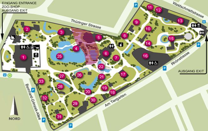 План карта зоопарка