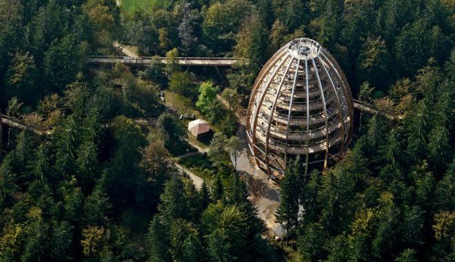 Парк Баварский лес