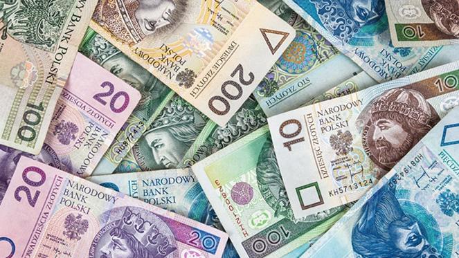 Что нужно знать о валюте Польши и с какими деньгами лучше туда ехать в 2020 году