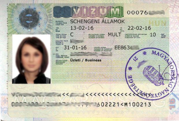 Вид визы в паспорте