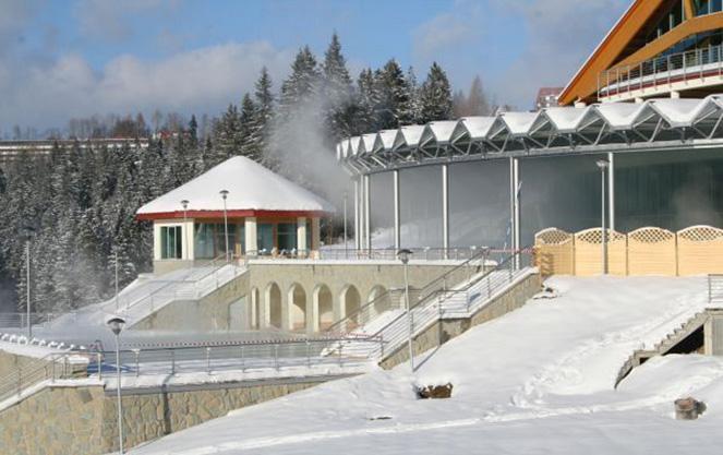 Лечебные термальные источники в Буковине
