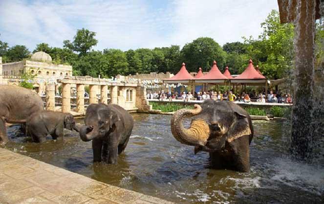 Ганноверский зоопарк