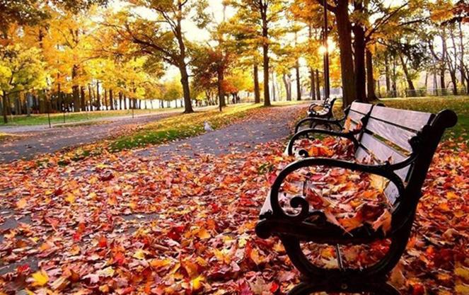 Незабываемый отдых в сентябре