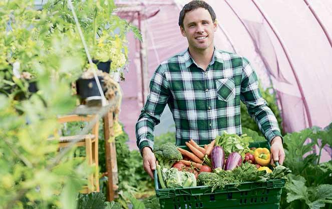 Вакансии за рубежом: работа в сельском хозяйстве в Финляндии