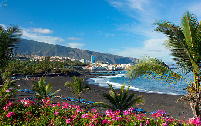 Тенерифе и канарские острова