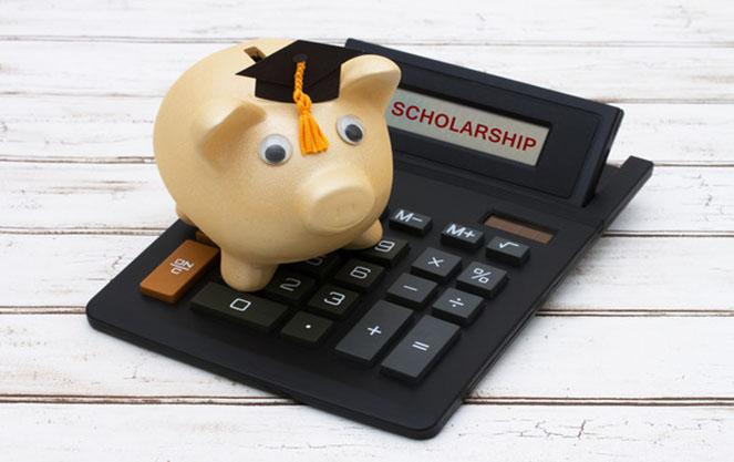 Как получить стипендию или грант в Испании