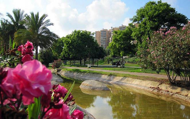 Сады турии в веленсии
