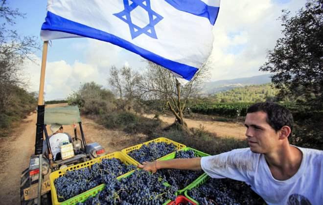 Кибуцы в Израиле в  2019  году: традиции и инновации
