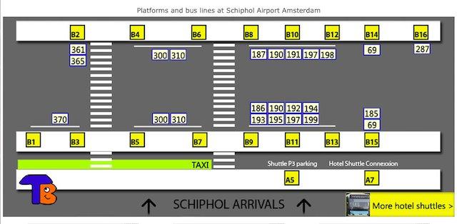 Автобусные платформы