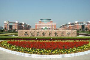 Рейтинг китайских университетов