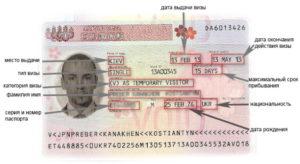 как выглядит японская виза