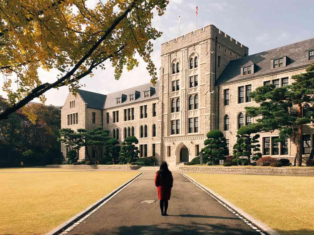 Университет Коре: факультеты, стипендия, языковые курсы