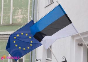 Выбираем место для проживания в Эстонии
