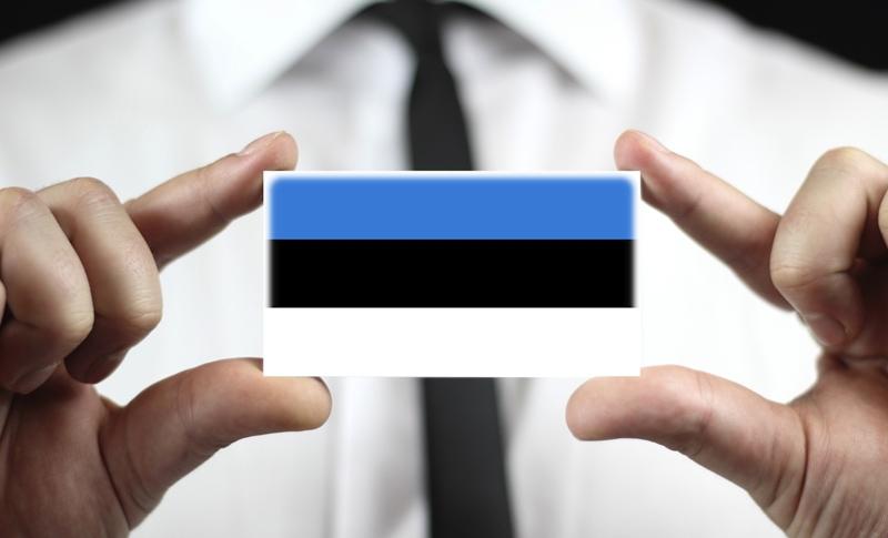 Как найти работу в Эстонии: вакансии, зарплаты, порядок трудоустройства