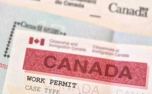 трудовая виза в Канаду