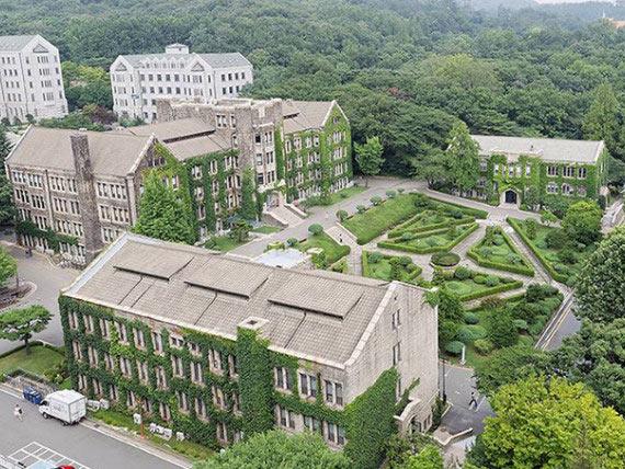 Университет Енсе: возможность необычной самореализации