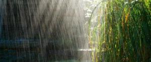 Зимний сезон дождей в Австралии