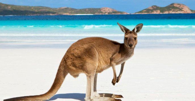 Цены в Австралии в 2020 году
