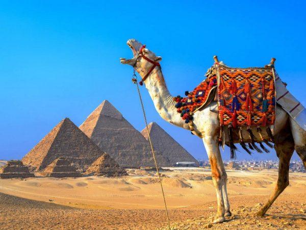 Отели Египта получили документ на возобновление работы