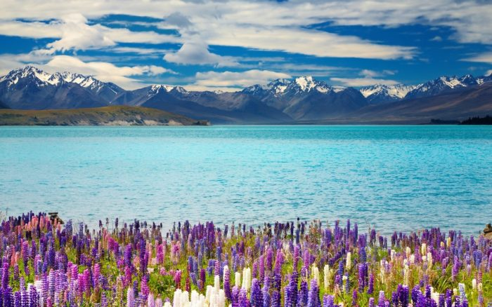 Жители Австралии и Новой Зеландии смогут посещать пляжи