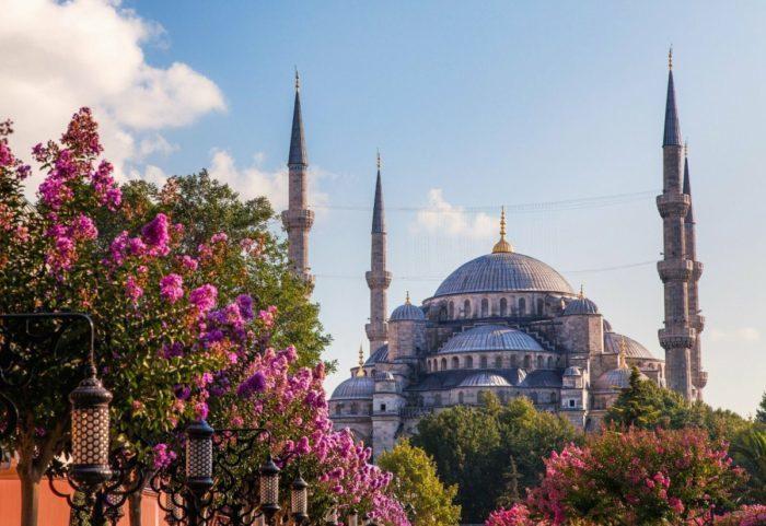 Турция планирует запустить авиасообщение с Россией к концу июня